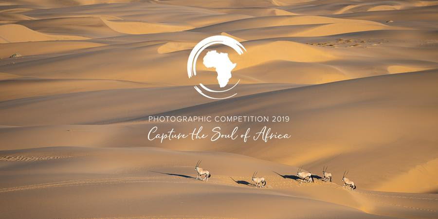 Wilderness Safaris Photographic Competition - portada
