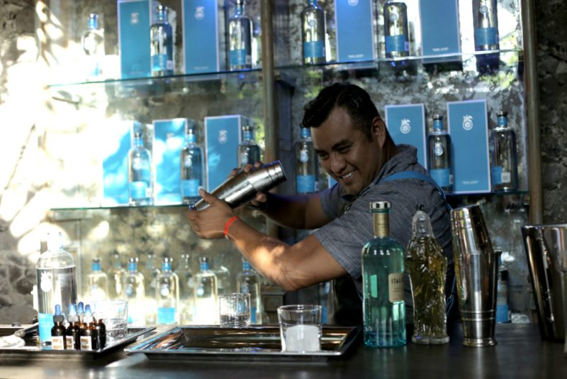 Tequila Casa Dragones festeja su décimo aniversario - 4-casa-dragones