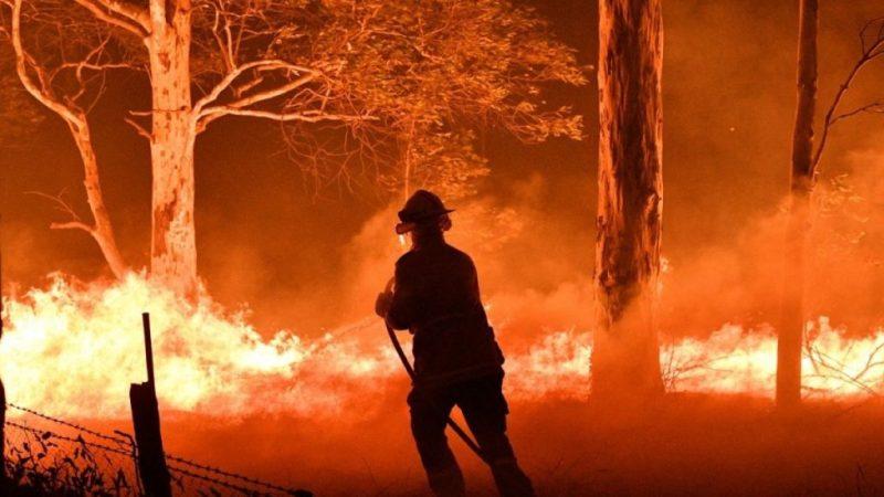 8 asociaciones a las que puedes donar para ayudar a Australia - australia-incendios-6