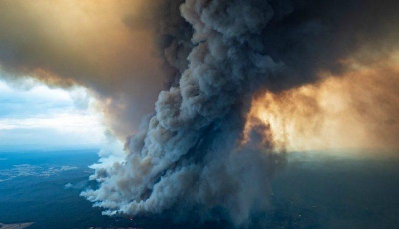 8 asociaciones a las que puedes donar para ayudar a Australia - incendios-australia-3