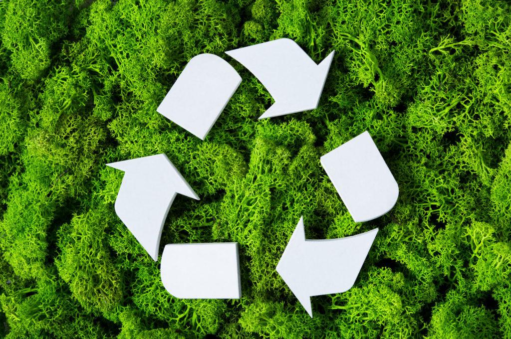 FERPA: La empresa que construye una vida sin basura - portada FERPA