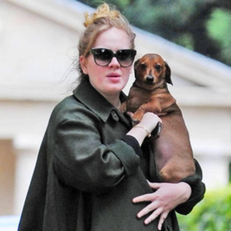 Datos curiosos de Adele que probablemente no conocías - adele-fun-facts-datos-curiosos-de-adele-que-probablemente-no-conocias-zoom-instagram-tiktok-covid-cuarentena-dia-de-las-madres-6