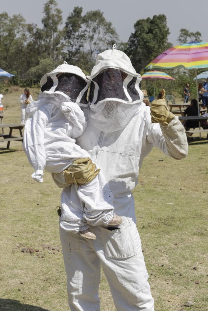 8 datos curiosos sobre las abejas - 05a0996