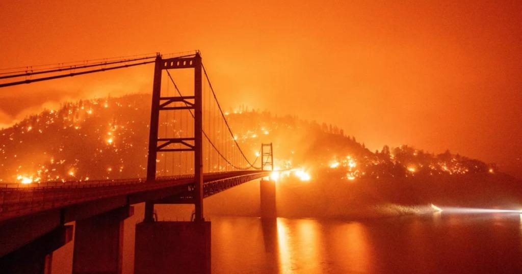 Asociaciones a las que puedes donar para ayudar a California - Portada Distintas asociaciones a las que puedes donar para ayudar a California google wildfire amazon califronia Washington ayuda organizaciones help global warming google