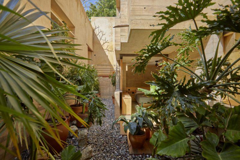 Grupo Habita celebra orgullosamente sus primeras dos décadas - grupo-habita-orgullosamente-celebra-sus-primeras-dos-decadas-grupo-habita-cadena-horelera-hotel-escondido-circulo-mexicano-grupo-habita-downtown-mexico-google-amazon-3