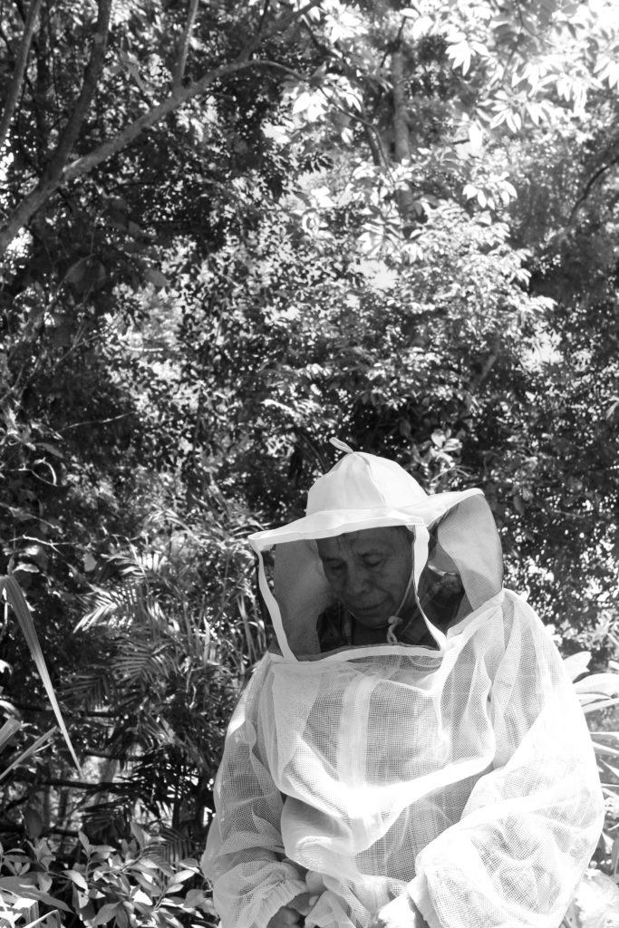Muuk 'Kaab, la miel de abeja orgánica, sustentable y orgullosamente mexicana - mukab-la-miel-de-abeja-organica-sustentable-y-orgullosamente-mexicana-miel-honey-foodie-instagram-tiktok-google-amazon-miel-de-abeja-organica-mercado-libre-navidad-cena-de-navidad-ancc83o-nuev-3