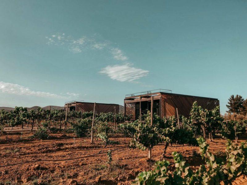5 lugares en Airbnb con vista espectacular - foto-1-hotel-partana-en-ensenada-valle-de-guadalupe-5-airbnbs-si-estasa-buscando-una-vista-espectacular