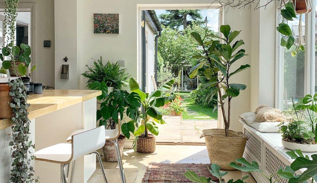 Tips de interiorismo para integrar plantas en tu hogar - TIPS DE INTERIORISMO PARA INTEGRAR PLANTAS EN TU HOGAR home decor diseño plant lover 1