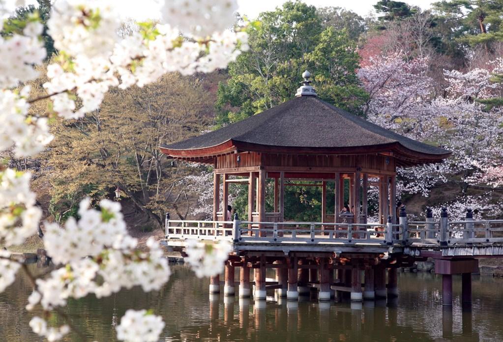 JAPÓN: CON CORAZÓN TRADICIONAL
