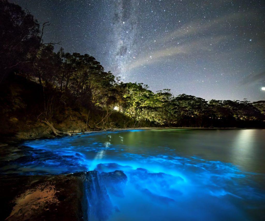Los lugares más impresionantes del mundo con bioluminiscencia