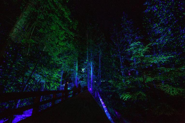 5 actividades que no te puedes perder en Whistler esta temporada - vallea-lumina