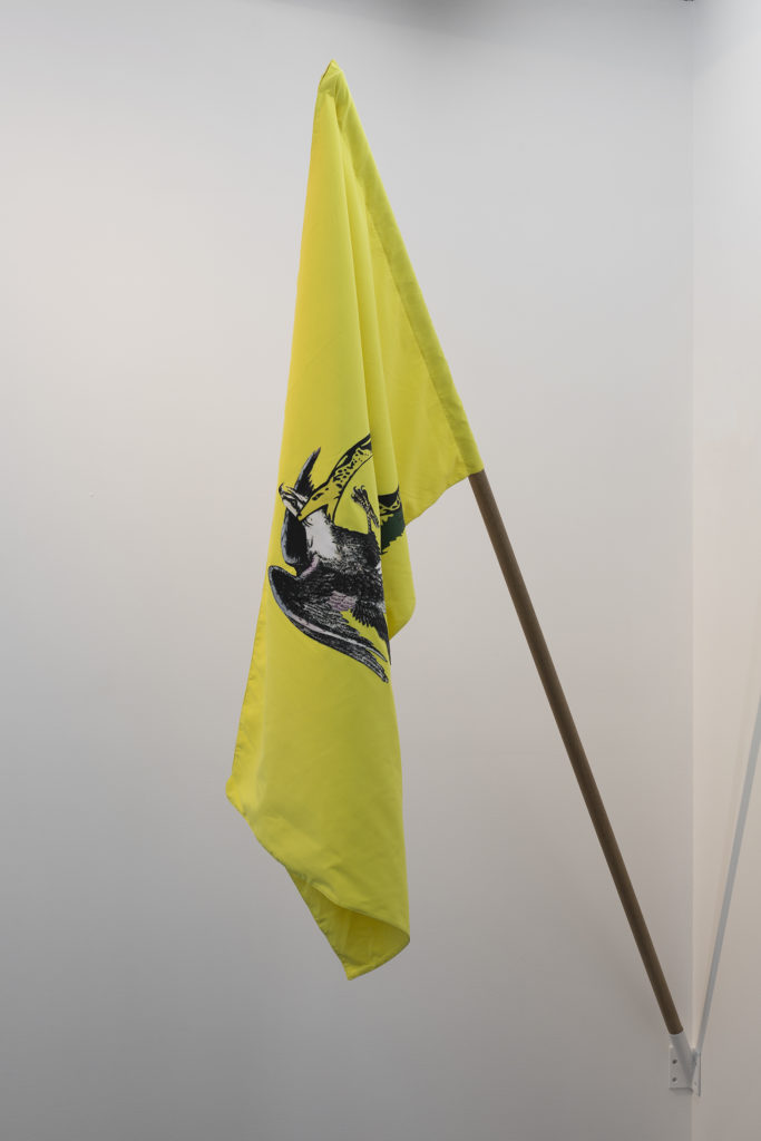 """Oráculo"", la primera exposición de Yoshua Okón en Proyectos Monclova - yoshua-okon-1"