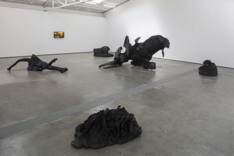 """Oráculo"", la primera exposición de Yoshua Okón en Proyectos Monclova - yoshua-okon-3"