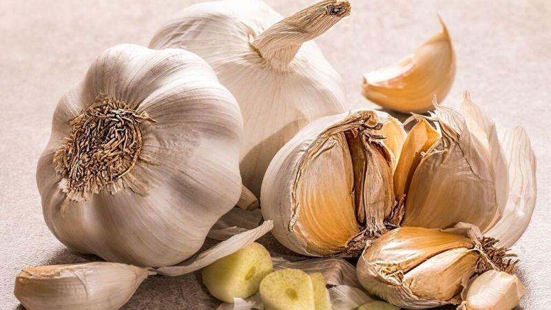 Alimentos para mejorar tu sistema inmunológico - sistema-inmunologico-superfood-covid-coronavirus-1