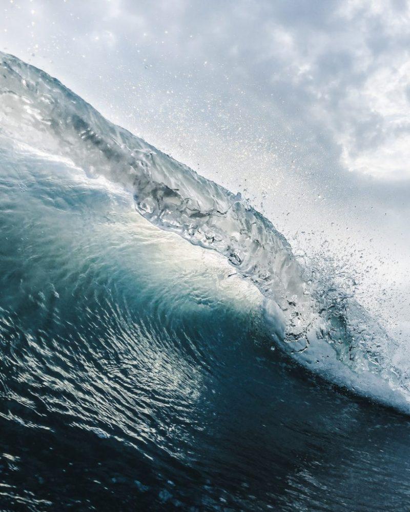 20 fotografías que te harán enamorarte del océano - fotografias-que-te-haran-enamorarte-del-oceano-google-fotos-google-zoom-online-google-meet-instagram-naturaleza-animales-en-peligro-de-extincion-oceano-cuidado-por-el-oce-10