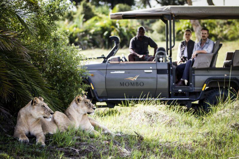 Traveler 101: la auténtica guía para viajar a África este verano - mombo-crookesandjackson-197