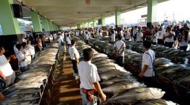 GenSan Fish Port