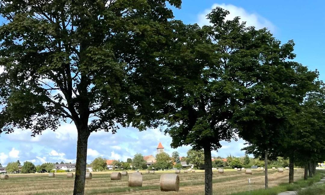 Blick auf Sitterswald mit Kirche