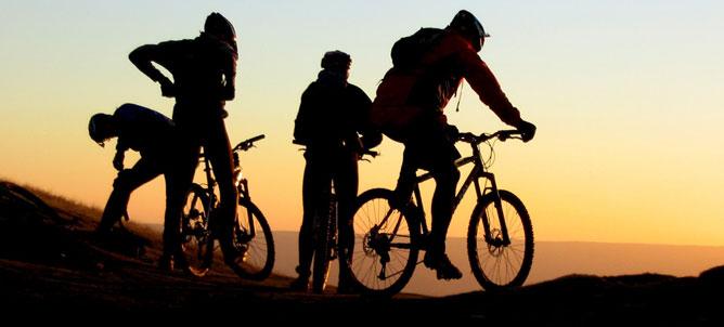 biciclette ibride