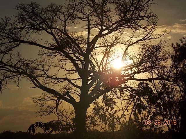 imagem-do-por-do-sol
