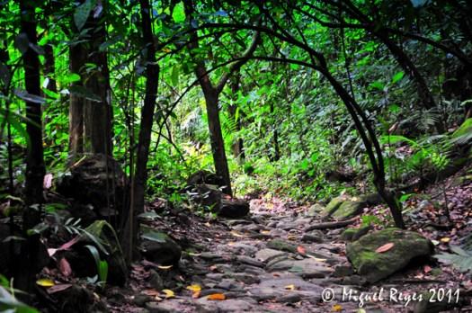 Cayos Cochinos en Ceiba Honduras