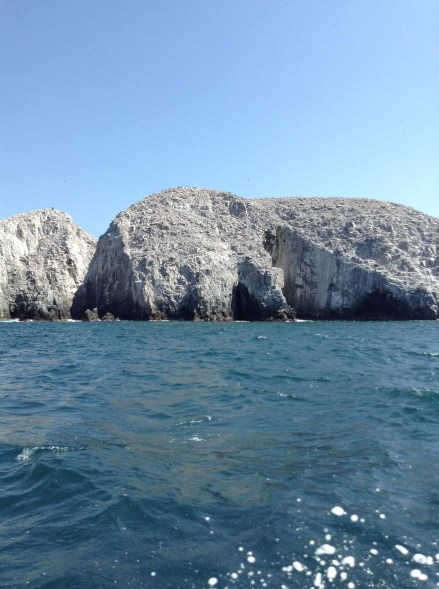 Pesca Ixtapa Zihuatanejo (18)