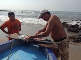 Pesca Ixtapa Zihuatanejo (46)