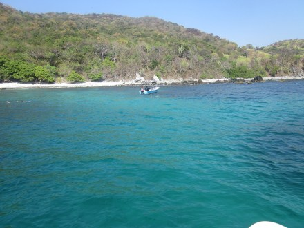 Playa Manzanillo (5)