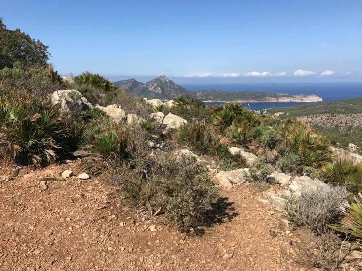 Winterferien auf Mallorca