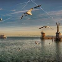 Ferien auf der deutschen Seite des Bodensees