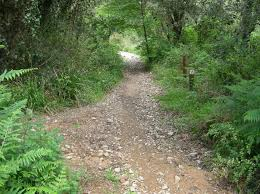 Camino subida Cadiretes