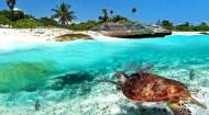 Caribe Mexicano inició su reactivación turística