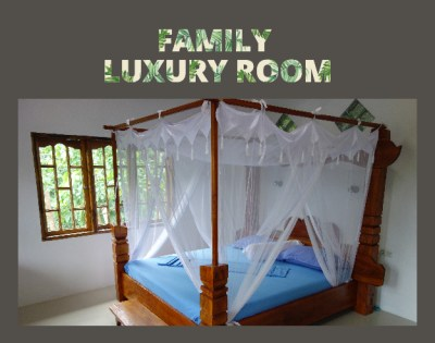 Family Luxury Room