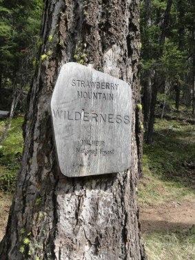 Strawberry Mountain Wilderness