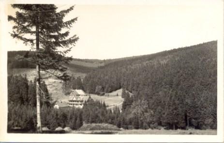 1931_1