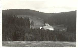 1950_4