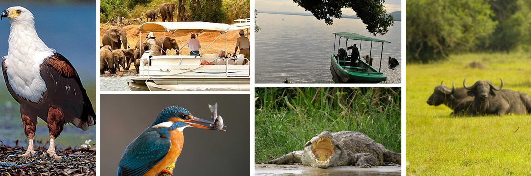 lake-mburo-boat-cruise