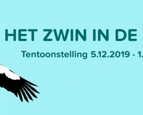 zwin in de strip