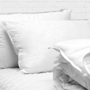 Sleep Blue Print Collection Pillow