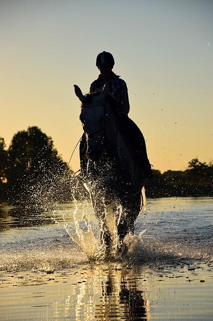 baja sardinia escursione con cavallo