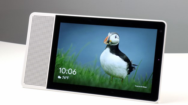 Puffin picture Lenovo Smart Display
