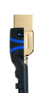 bluerigger cutaway