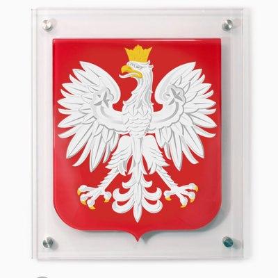 Szklany Godło Polski do zawieszenia na ścianie. Przestrzenne godło ze szkła.