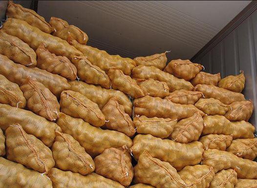 ثلاجات البطاطس