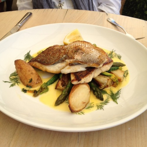 Pan-fried red snapper, roast baby fennel, steamed asparagus, zucchini flowers, sea salt roasted kipfler potatoes and dill buerre blanc $29.00