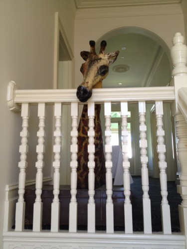 There's a gorgeous giraffe on the stairs!