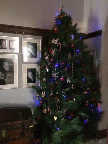 Just decorated - our 10 foot Christmas Tree