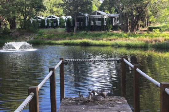 The pond with cottages in the background