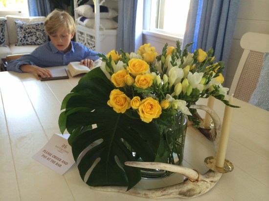 Fresh flowers and my little guy preferring to sit as far from me as possible