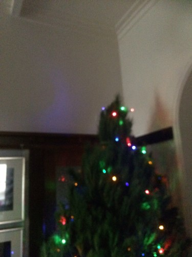 It's a good tree but it's not tall enough to reach the ceiling